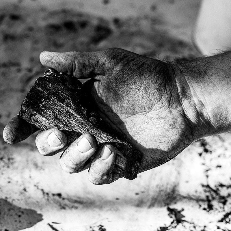 Anthony Burrill : un geste artistique pour la faune australienne ayant péri dans les flammes